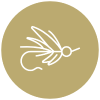 Icon of a fly-fishing lure