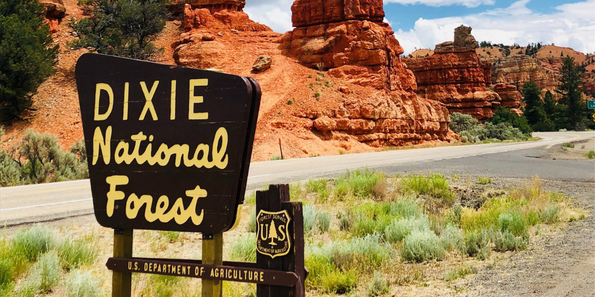 Dixie forest sign in Red Canyon