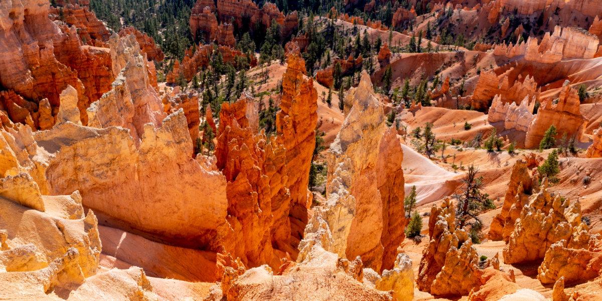 Rows of sandstone hoodoos