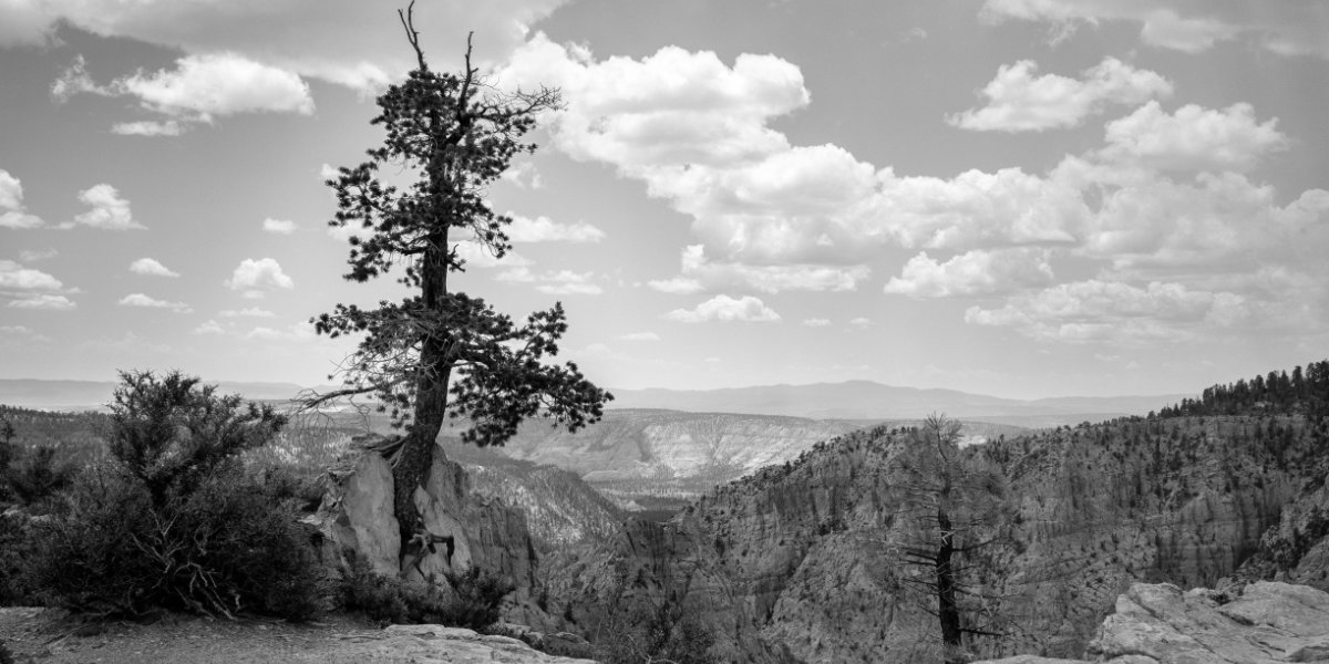 A panorama of Capitol Reef National Park