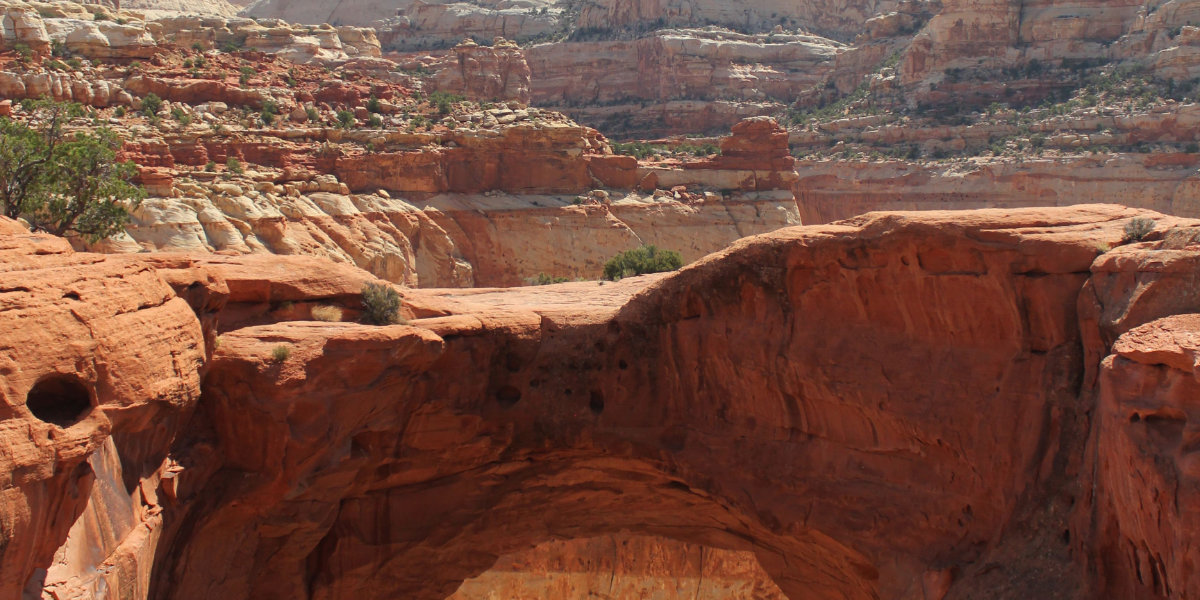 Cassidy Arch up close